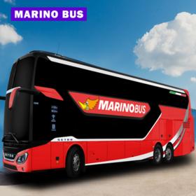 Marino-Bus
